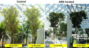 ABN Product_1