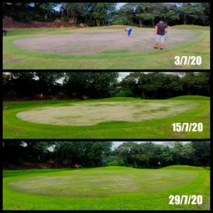 Golf-nutriguardnbioshield
